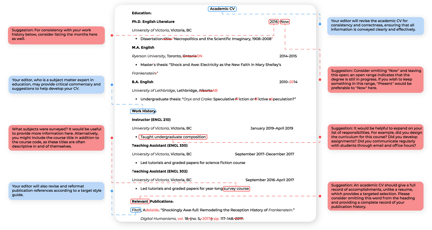 Academic CV Editing Sample